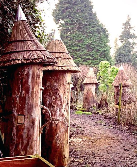 log hives