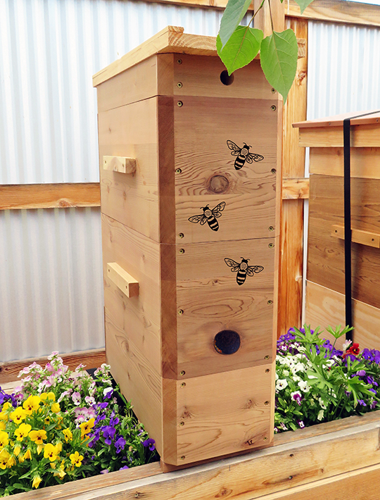 Warré hive on planter in summer