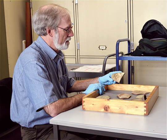 The author examining pottery shards at the Petrie Museum of Egyptian Archaeology. The hieratic form of the honey bee hieroglyph is easily seen on the piece in my hand. Photograph by Jessee Smith.