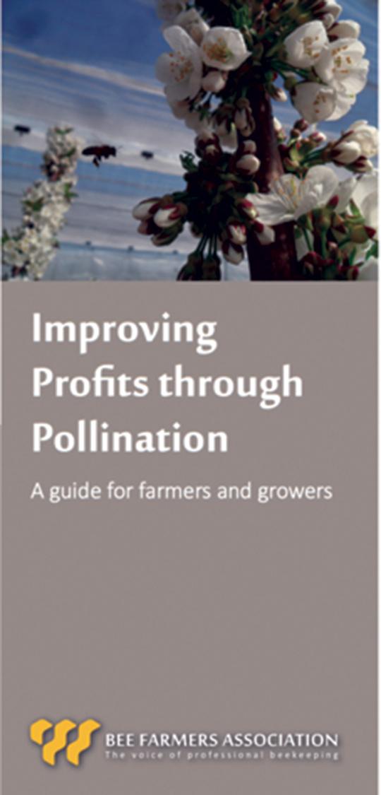 BFA Pollination Leaflet