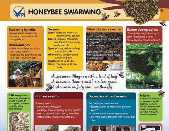Infographic: Swarming