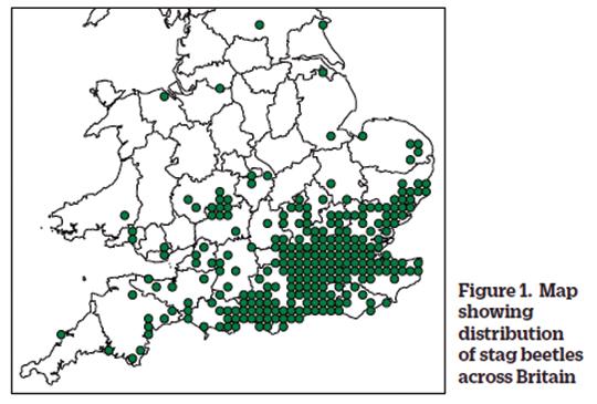 Habitat and Distribution